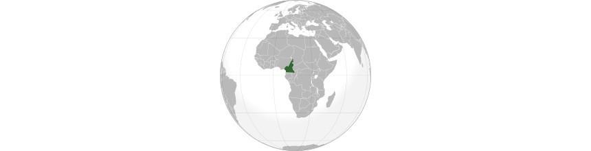 Objets africains du Cameroun